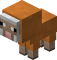 Baby Orange Sheep Revision 1.png