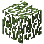 Birch Leaves.png