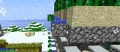 Cactusfarm4.jpg