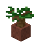 Potted Dark Oak Sapling.png