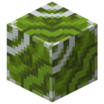 Green Glazed Terracotta.png