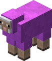 Magenta Sheep Revision 1.png