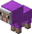 Baby Magenta Sheep Revision 1.png