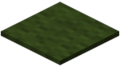 Green Carpet Revision 1.png