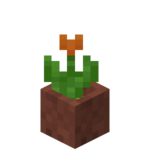 Potted Orange Tulip.png