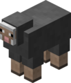 Gray Sheep Revision 1.png