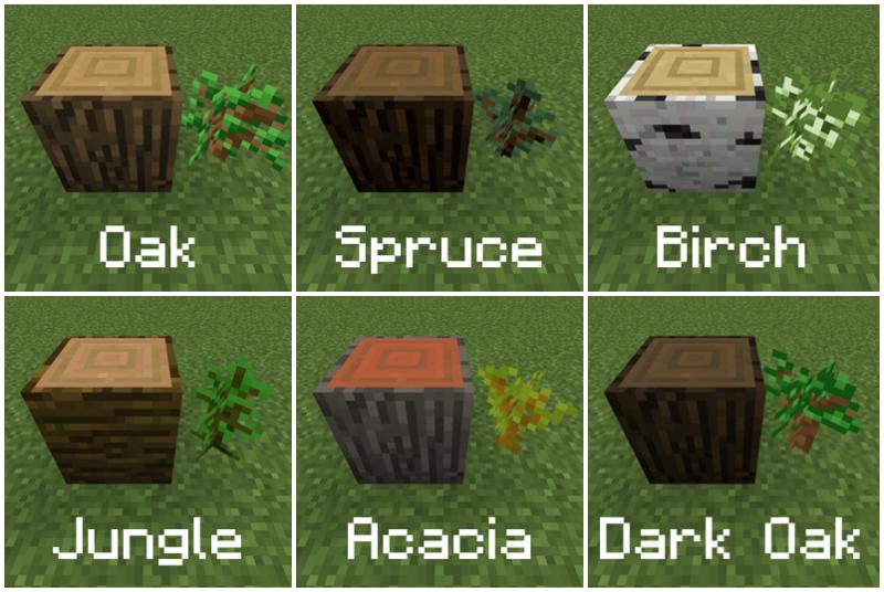 Bestand:Kiemplanten met namen.png
