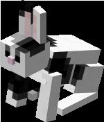 Zwart-wit konijn.png