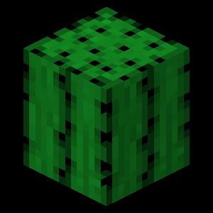 Plik:Kaktus przed TextureUpdate.png