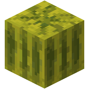Plik:Arbuz (blok) przed Texture Update.png