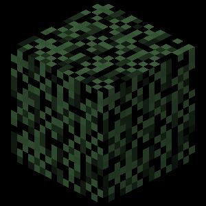 Plik:Świerkowe liście przed TextureUpdate.png