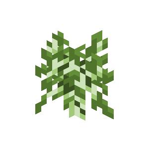 Plik:Sadzonka brzozy przed Texture Update.png