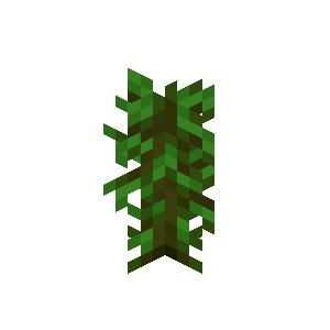 Plik:Tropikalna sadzonka.png
