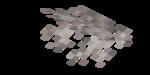 Martwy ścienny wachlarz koralowca mózgowatego.png