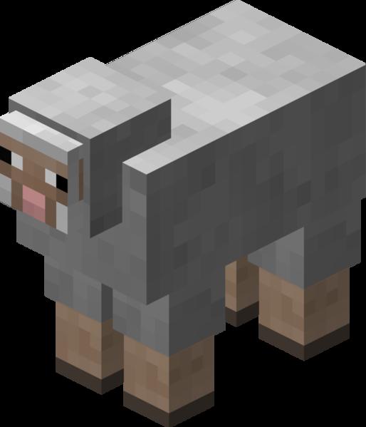 Plik:Owca jasnoszara przed 1.12.png