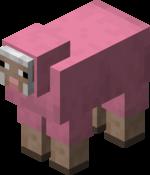 Owca różowa.png
