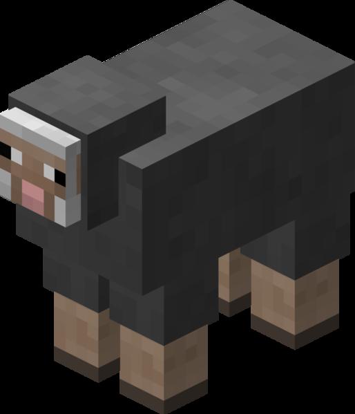Plik:Owca szara przed 1.12.png