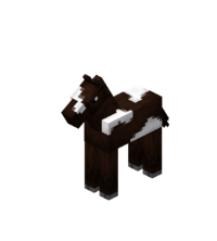 Darkbrown Baby Horse with White Field.png