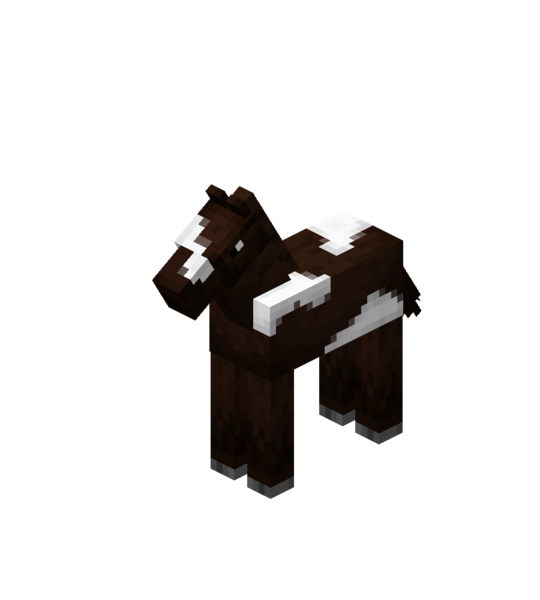 Plik:Darkbrown Baby Horse with White Field.png