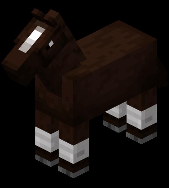 Plik:Darkbrown Horse with White Stockings.png