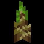 Sadzonka bambusa.png