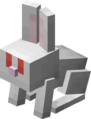 Mały biały królik.png
