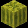 Arbuz (blok) przed Texture Update.png