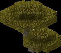 Akacjowe drzewo.png