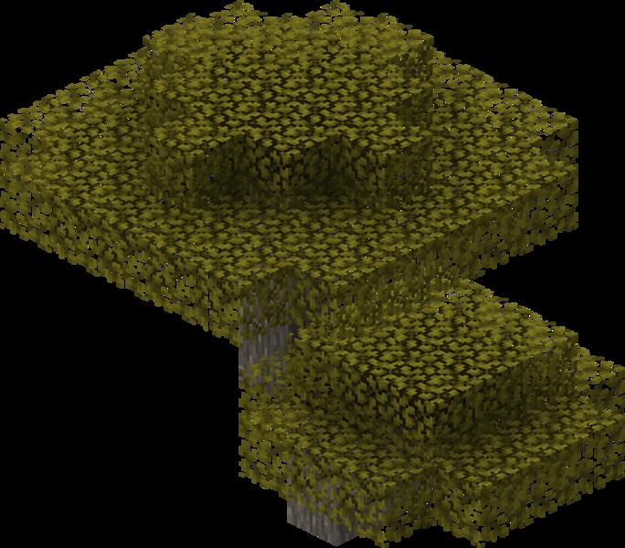 Plik:Akacjowe drzewo.png