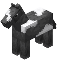 Gray Horse with White Field.png