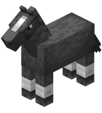 Gray Horse with White Stockings.png