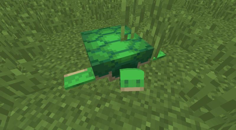 Plik:Żółw na lądzie.png