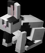 Black & White Rabbit.png