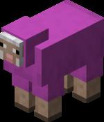 Owca karmazynowa.png