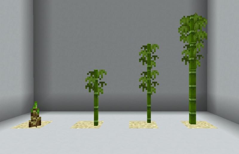 Plik:Stopnie bambusa.png
