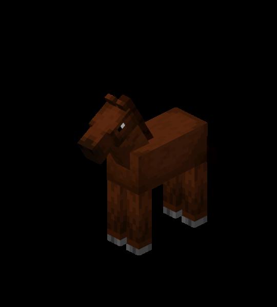 Plik:Brown Baby Horse.png