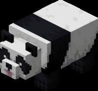 Figlarna panda.png