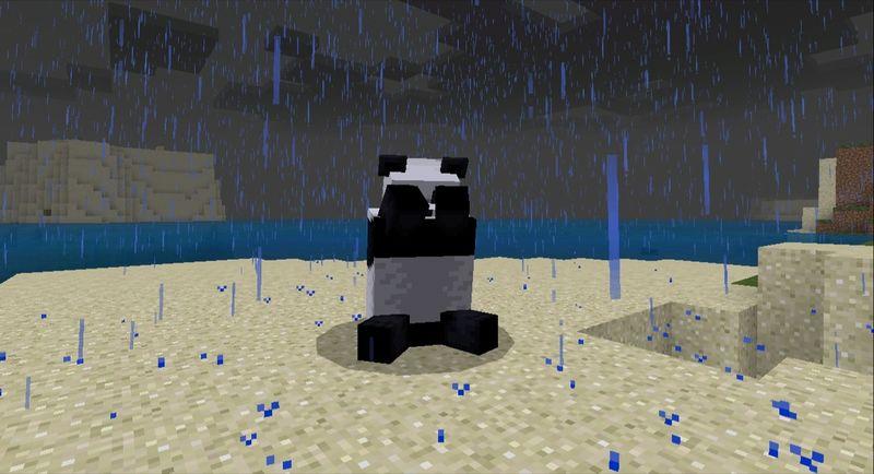 Plik:Zmartwiona panda podczas deszczu.jpg