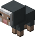 Owca mała szara.png