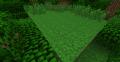 Miniatura wersji z 22:33, 29 gru 2013