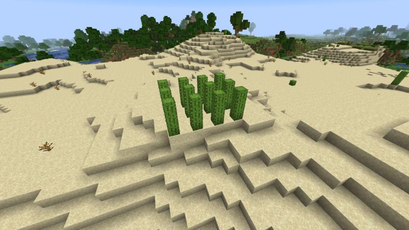 Plik:Kaktusy uprawa.png