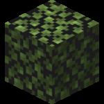 Brzozowe liście(Fast).png