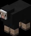 Owca czarna przed 1.12.png