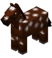 Brown Horse with White Spots.png