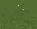 Miniatura wersji z 14:44, 20 lis 2014