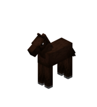 Darkbrown Baby Horse.png