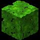 Tropikalne liście.png