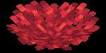 Pionowy wachlarz koralowca ognistego.png