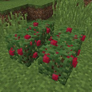Лесные ягоды (Rustic).png