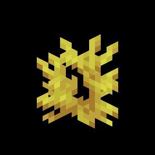 Роговый коралл.png